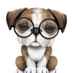 Profile picture of Optician2020